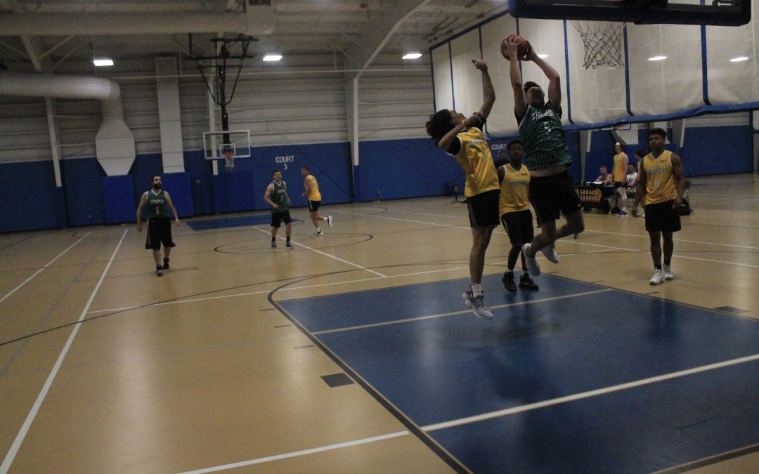 Stampede pull off miracle win against the Mambas